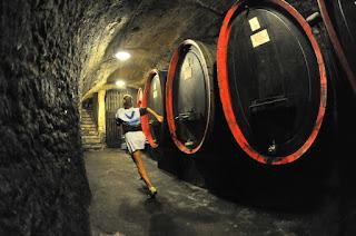 Valtellina Wine Trail 2015