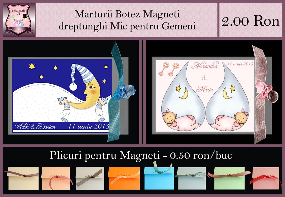 marturii-pentru-gemeni-magneti