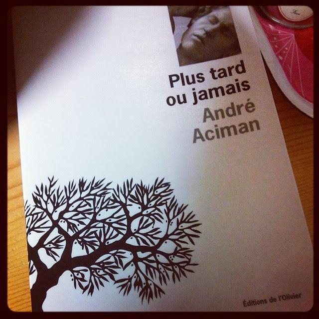Plus tard ou jamais - André Aciman - Editions de l'Olivier - 2008