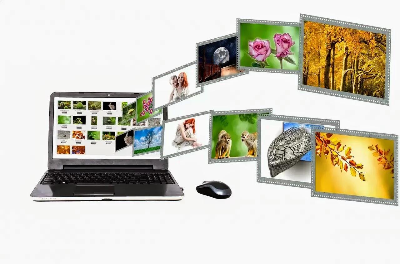 laptop, internet, portal