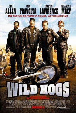 Wild Hogs film