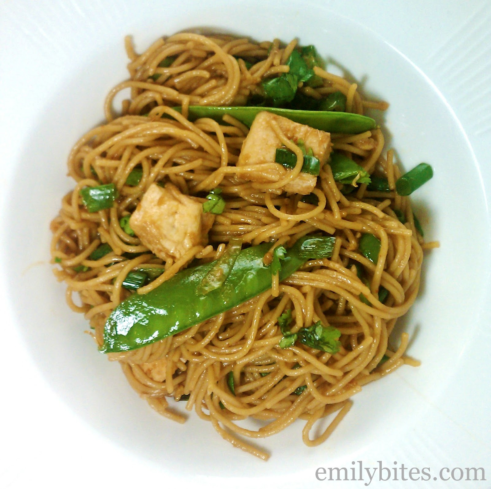 Spicy Sesame Noodles with Chicken | Pinnutty.com