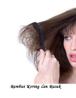 rambut rusak dan kering