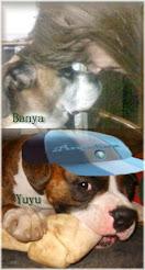Banya y Yuyu