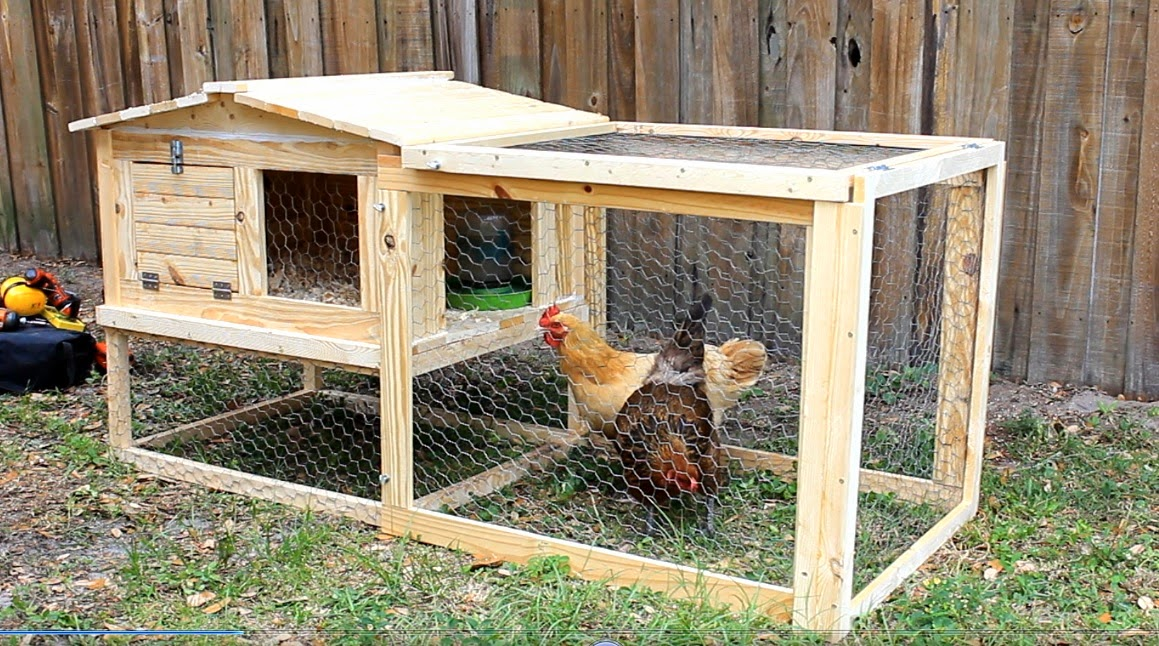 Simply easy diy diy small backyard chicken coop for Small chicken house plans