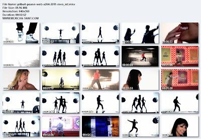 Pitbull-Pause-WEB-x264-2011-MVO_iNT
