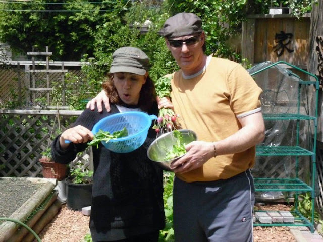 Backyard Urban Farm Company : Backyard Urban Farm Company