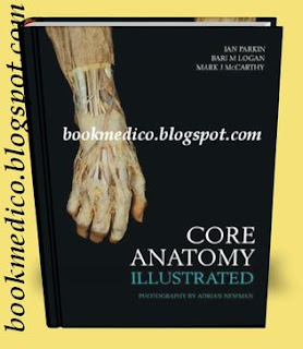 Core-Anatomy-Illustrated