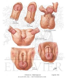 comprobar masturbacion
