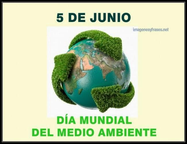 Día Mundial del Medio Ambiente: «Alza tu voz, no el nivel del mar