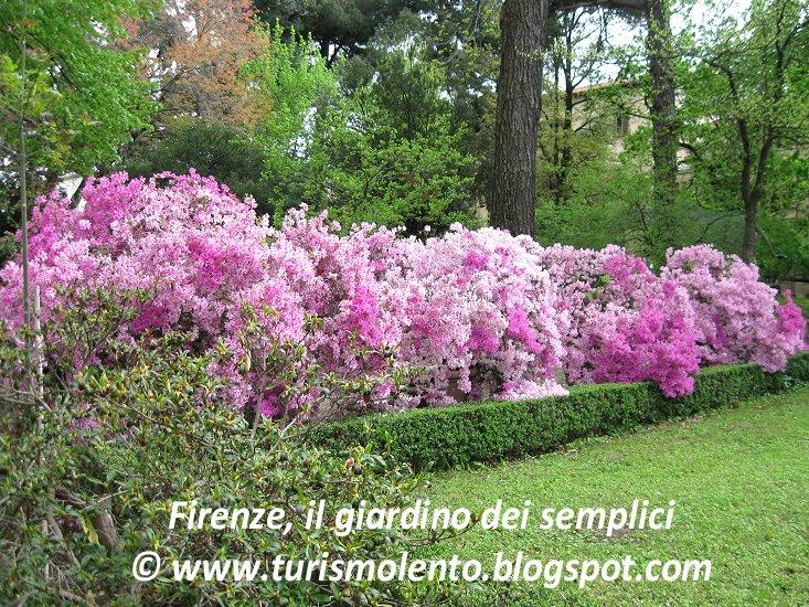 Turismo lento firenze go slow il giardino degli iris e - Il giardino degli dei ...
