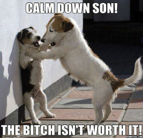 Calm down son! The bitch isn't worth it!  Funny Pictures