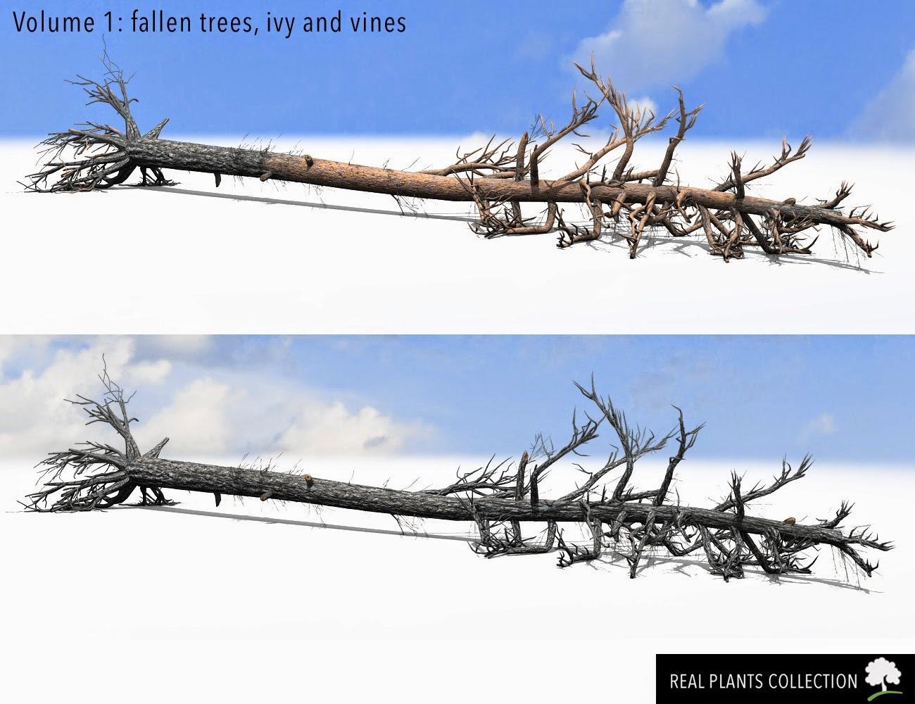 RPC Volume 1: arbres tombés, Ivy et vignes