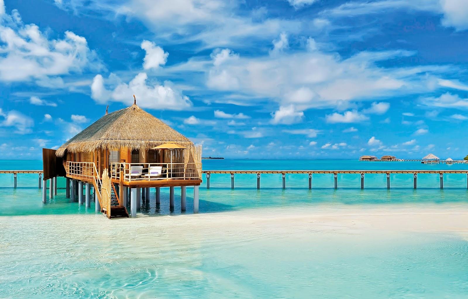 DailyMail UK cites Maldives Constance Moofushi Resort reviw