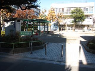 ブランコや鉄棒もある児童公園(奥の建物は保育園)