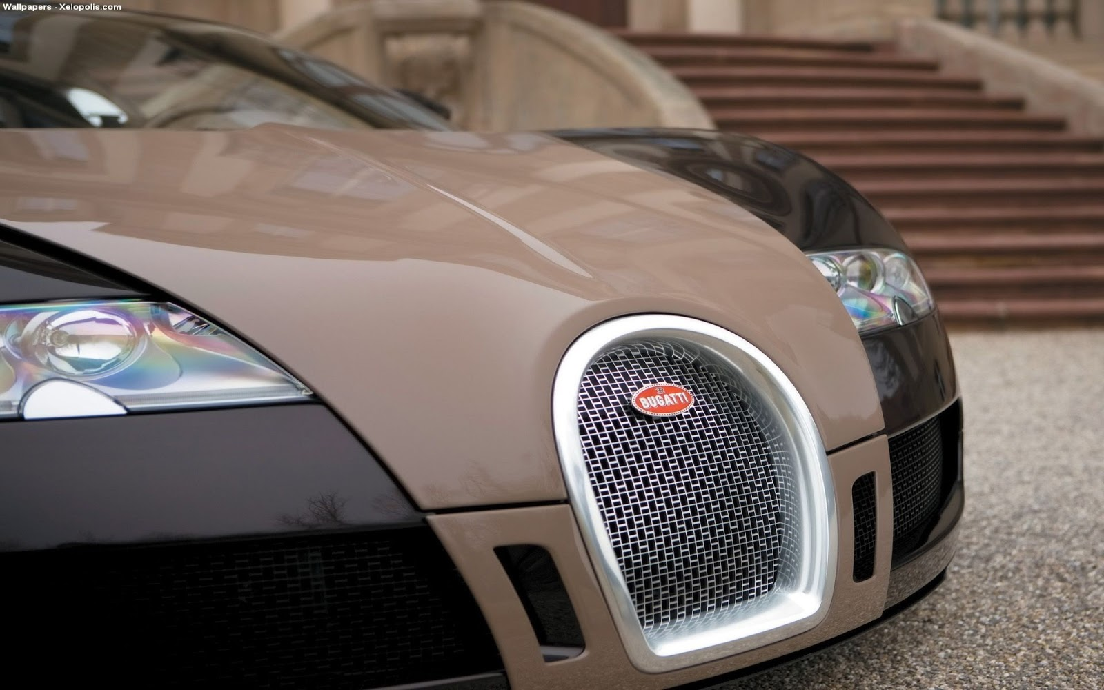 Bugatti Veyron Wallpaper Netcarshow Latest Cars Models Collection - Net car show