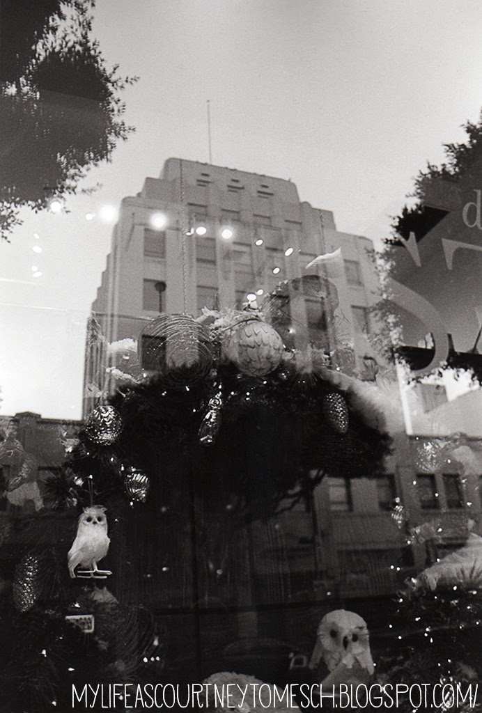 Black and White Photography Los Angeles Window Reflection