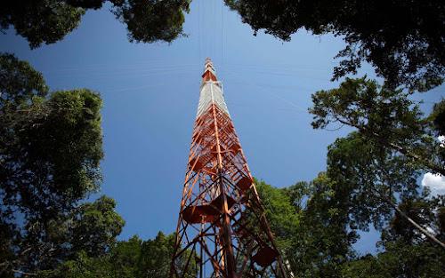 Torre Atto, floresta Amazônica