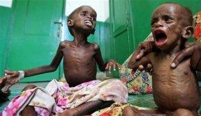SÃO SEIS AS REGIÕES SOMALIS EM ESTADO DE FOME , alerta ONU