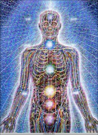 Κβαντική συνειδητότητα