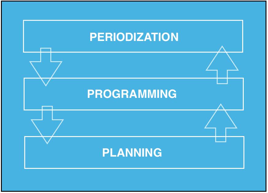 future plan programmer