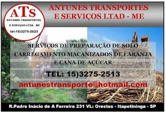 ANTUNES TRANSPORTES E SERVIÇOS LTDA - ME
