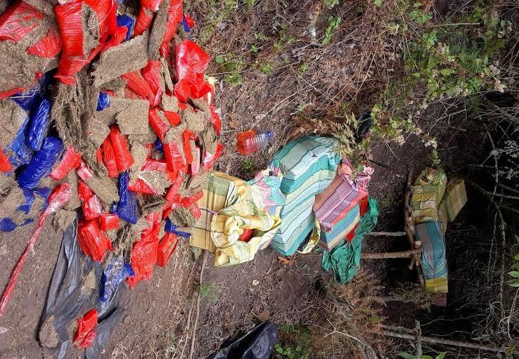 En Abrego-Colombia, Policía ubica laboratorio e incauta más de seis toneladas de marihuana