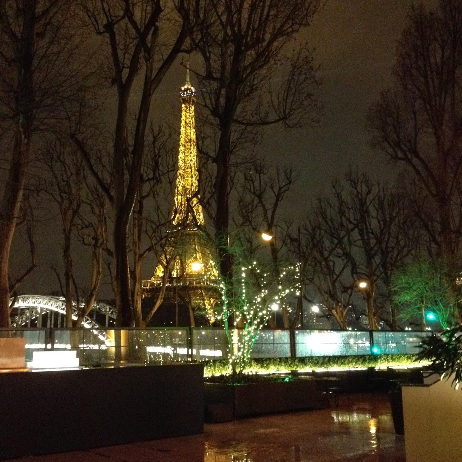 Au Monsieur Bleu - Paris 16 ème - terrasse