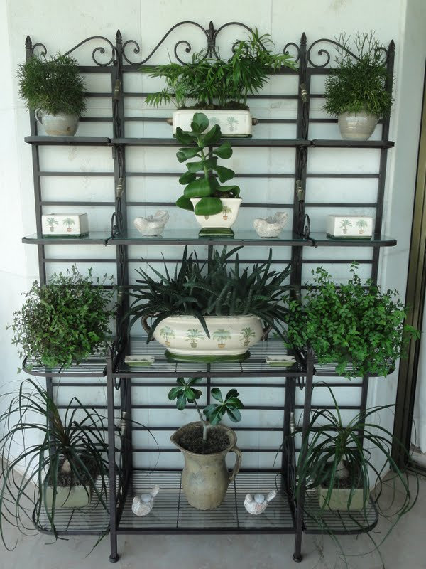Blog da andrea rudge a pedidos - Estantes para plantas ...