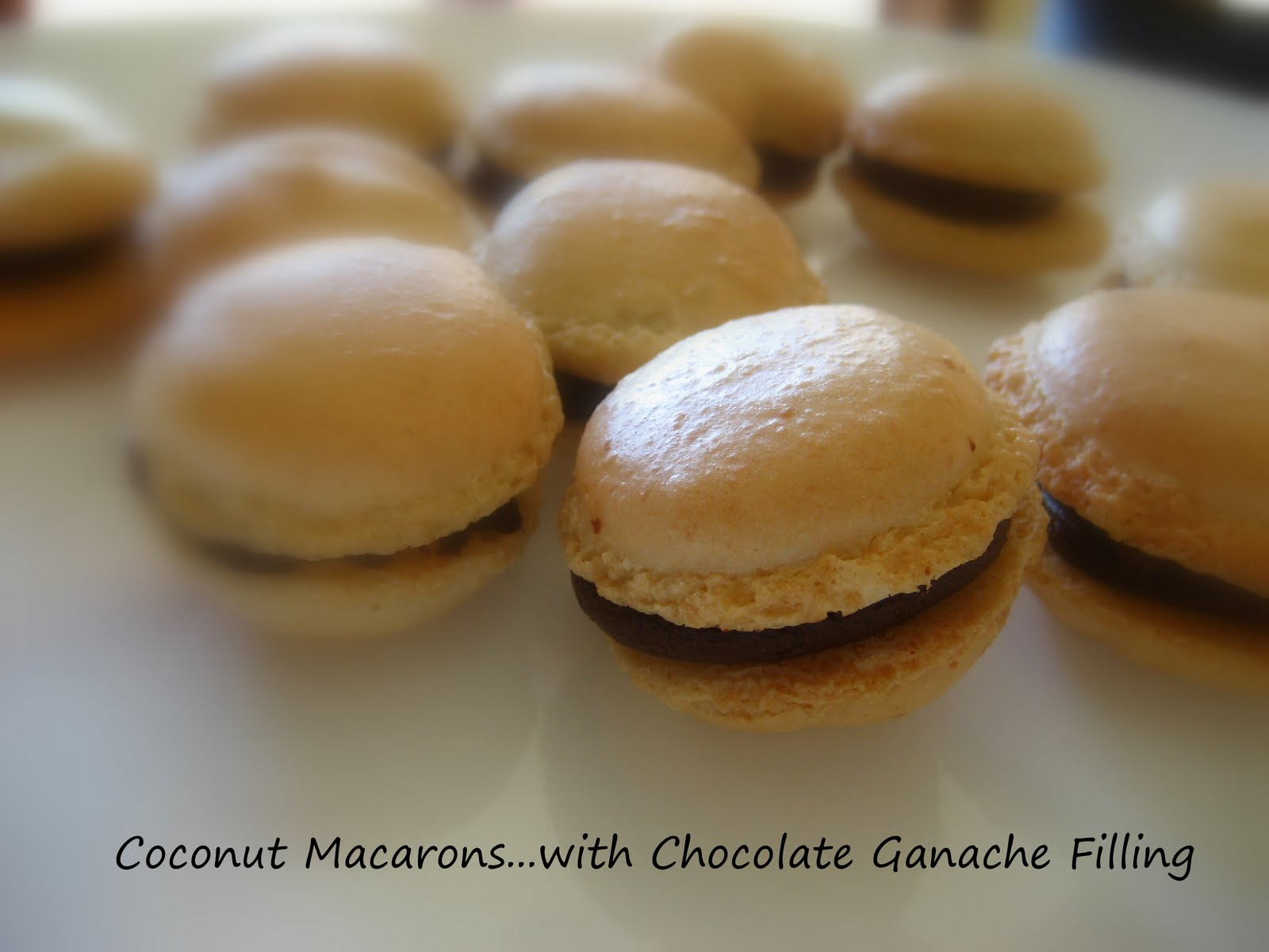 ... Cooking In Montana: Coconut French Macarons... with Chocolate Filling