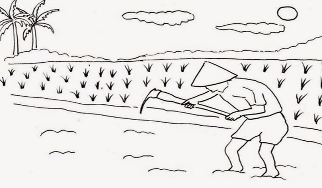 Demikian Gambar Gambar Hitam Putih Untuk Belajar Mewarnai Dengan Tema Pegunungan Dan Sawah Di Gambar Diatas Ada Gunung Sawah Dengan Tanaman Padinya Ada