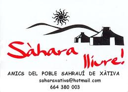 Contactar amb nosaltres