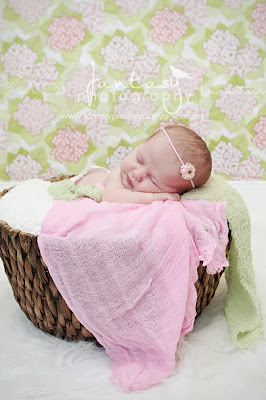Winston Salem Newborn Photography | Triad Newborn Photographers