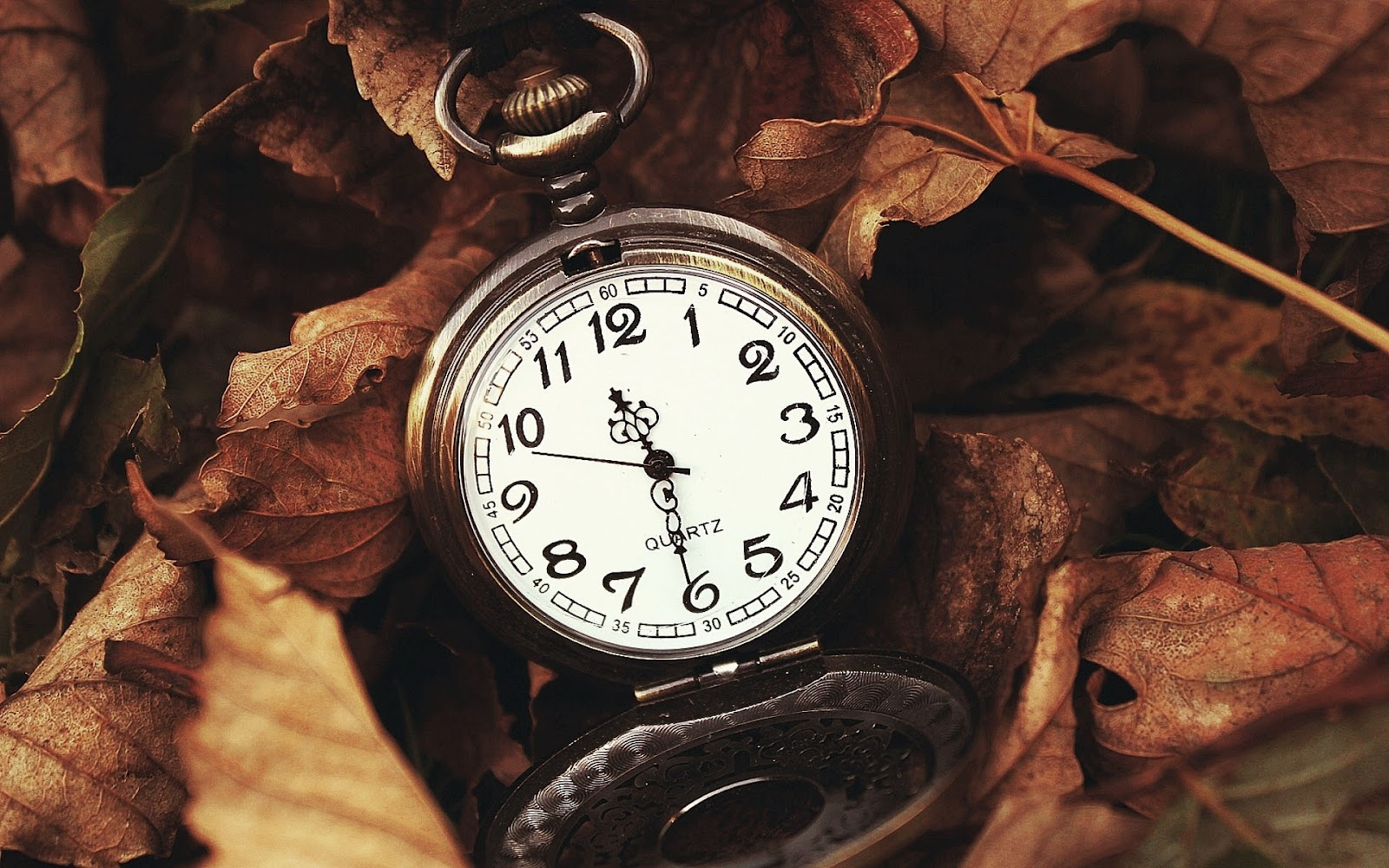 http://1.bp.blogspot.com/-PoUlAuJB9Ac/UGYH-9qU1iI/AAAAAAAAE4s/5kQB65r4aFQ/s1600/hd-herfst-wallpaper-met-een-oud-horloge-tussen-de-herfstbladeren-hd-herfst-achtergrond-foto.jpg