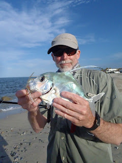African pompano, roosterfish