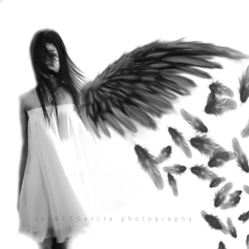 We Are Each Angels with One Wing