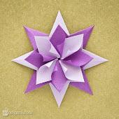 Estrella Modular