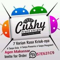 Lowongan Kerja Reseller Kripik Cushy di Makassar