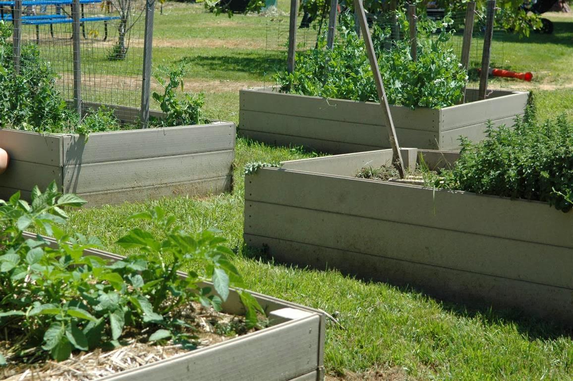 mar vista green garden showcase richland 11562 richland