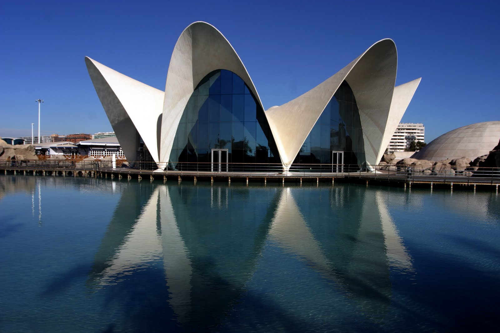 Oceanografico Building in Valencia Spain