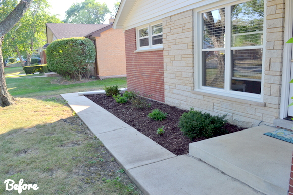 Here's the old landscaping in the front yard.