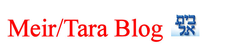 Meir/Tara Blog