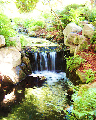 Waterfall, beacon hill park, victoria, bc