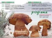 As xornadas micolóxicas regresan coma sempre á Costa da Morte