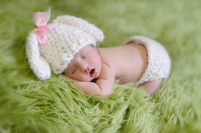 Newborn Lamb Set