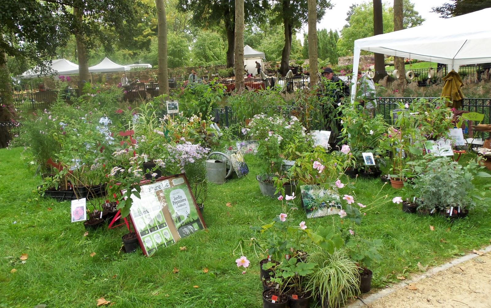 Jardin Clair Obscur: Fleurs en Seine aux Mureaux