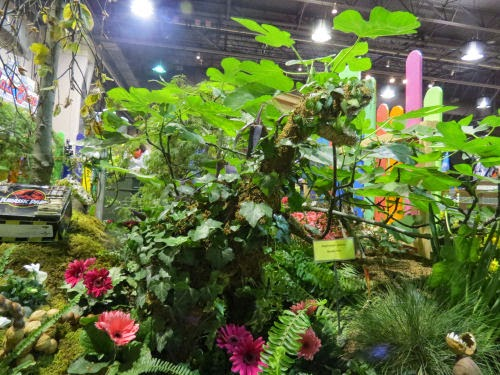 Philadelphia Flower Show 2015: Colors- Red