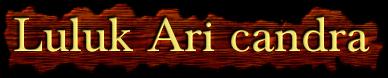 ™Luluk Ari candra™