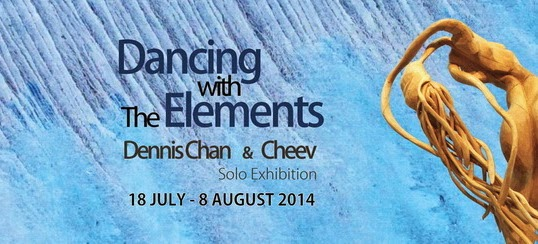Dancing with The Elements 2014