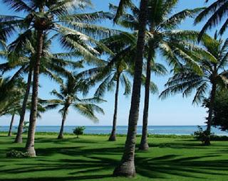 lapangan golf pantai sire